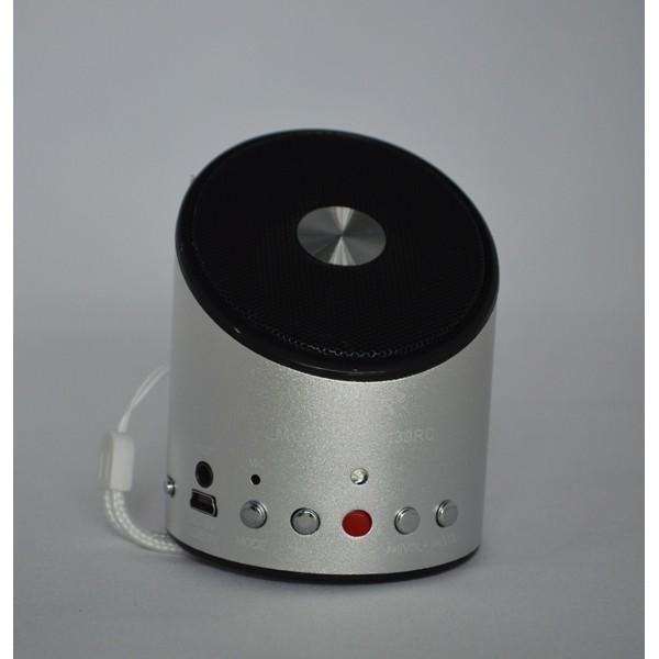 Boxa portabila cu functie de inregistrare Wster WS-139RC