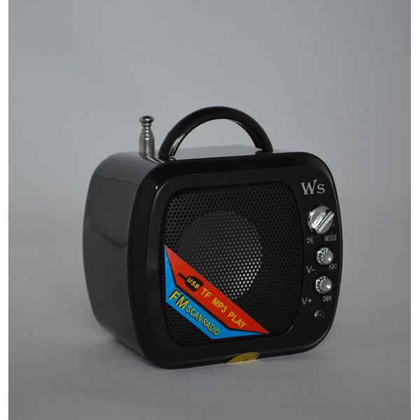 Boxa portabila Wster WS-575