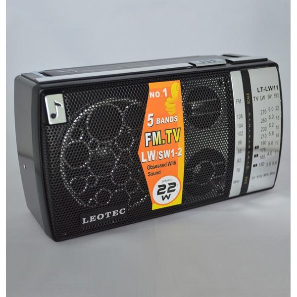 Radio portabil LEOTEC LT-LW11