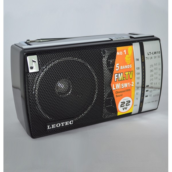 Radio portabil LEOTEC LT-LW10