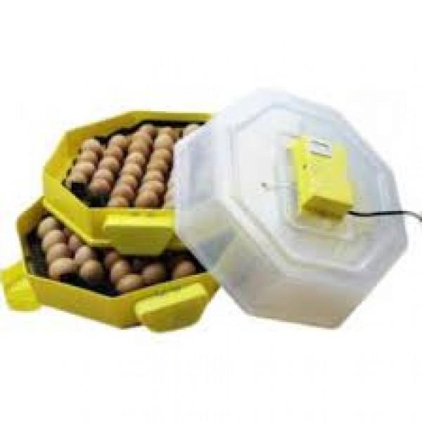 Clocitoare Incubator Cleo 5X2 D TH Automat